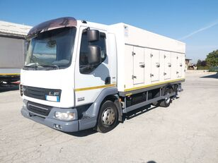 DAF 45.220 SURGELATI ATP 10/2024 - 120QLI kamion hladnjača