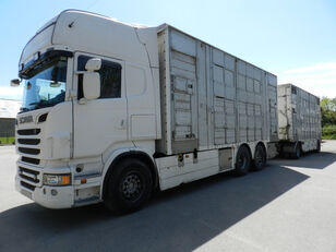 SCANIA R560 kamion za prevoz stoke + prikolica za prevoz stoke